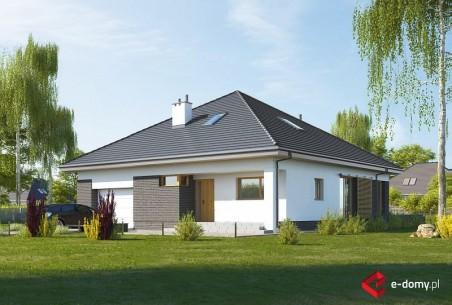 Dom w budlejach 3 (A)