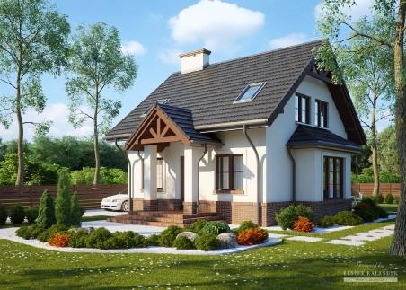 Dom w cyklamenach 5