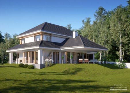 Dom w aksamitkach 3