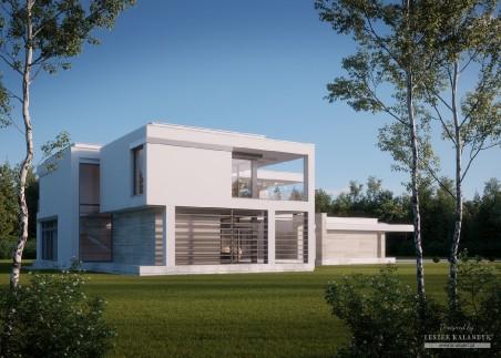 Dom w amarylisach 3 (G2)